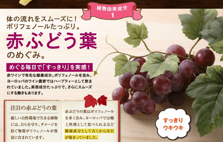 赤ぶどう葉