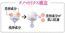ナノマトリックス構造