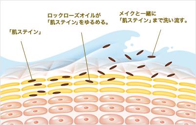 スキンクリア クレンズオイルの成分の効能